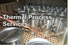 Thermal Process Services